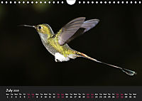 The Flight of Birds by Tony Mills (Wall Calendar 2019 DIN A4 Landscape) - Produktdetailbild 7