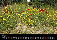 The Greek Island Of Ikaria (Wall Calendar 2019 DIN A4 Landscape) - Produktdetailbild 5
