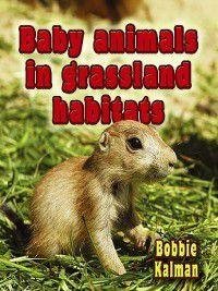 The Habitats of Baby Animals: Baby Animals In Grassland Habitats, Bobbie Kalman