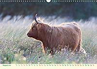 The Hairy Cow Calendar (Wall Calendar 2019 DIN A3 Landscape) - Produktdetailbild 8