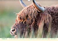 The Hairy Cow Calendar (Wall Calendar 2019 DIN A3 Landscape) - Produktdetailbild 10