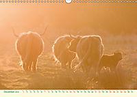 The Hairy Cow Calendar (Wall Calendar 2019 DIN A3 Landscape) - Produktdetailbild 12
