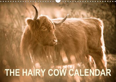 The Hairy Cow Calendar (Wall Calendar 2019 DIN A3 Landscape), Geoff du Feu