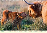 The Hairy Cow Calendar (Wall Calendar 2019 DIN A3 Landscape) - Produktdetailbild 5