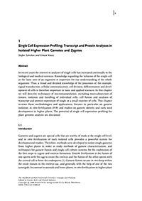 The Handbook of Plant Functional Genomics - Produktdetailbild 1