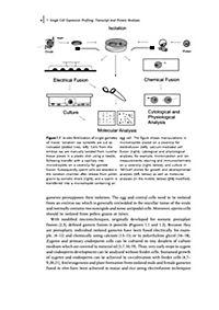 The Handbook of Plant Functional Genomics - Produktdetailbild 2