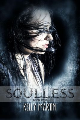 The Heartless Series: Soulless (The Heartless Series, #2), Kelly Martin
