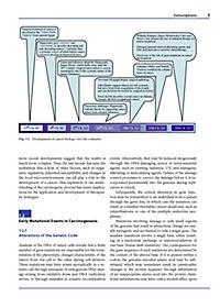 The Impact of Tumor Biology on Cancer Treatment and Multidisciplinary Strategies - Produktdetailbild 1