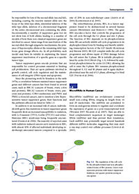 The Impact of Tumor Biology on Cancer Treatment and Multidisciplinary Strategies - Produktdetailbild 6