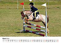 The Joy of Eventing (Wall Calendar 2019 DIN A3 Landscape) - Produktdetailbild 3