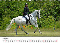 The Joy of Eventing (Wall Calendar 2019 DIN A3 Landscape) - Produktdetailbild 6
