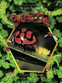 The Life Cycle: The Life Cycle of a Beetle, Molly Aloian, Bobbie Kalman