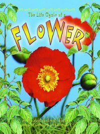 The Life Cycle: The Life Cycle of a Flower, Molly Aloian, Bobbie Kalman
