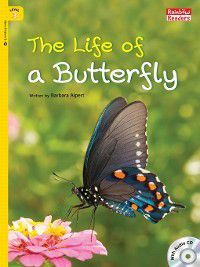The Life of a Butterfly, Barbara Alpert