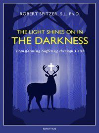 The Light Shines On in the Darkness, Robert J Spitzer