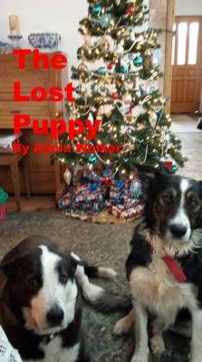 The Lost Puppy, Alicia Walker
