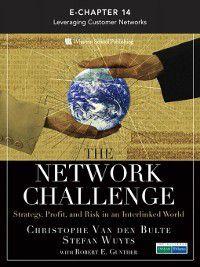 The Network Challenge (Chapter 14), Stefan Wuyts, Christophe Van den Bulte