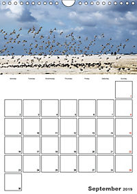 The North Sea / Travel Impressions (Wall Calendar 2019 DIN A4 Portrait) - Produktdetailbild 9