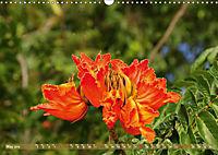 The Paradise of Hawaii (Wall Calendar 2019 DIN A3 Landscape) - Produktdetailbild 5