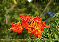 The Paradise of Hawaii (Wall Calendar 2019 DIN A4 Landscape) - Produktdetailbild 5