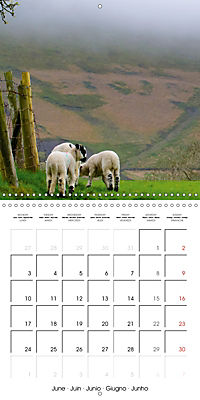 The Pendle Way (Wall Calendar 2019 300 × 300 mm Square) - Produktdetailbild 6