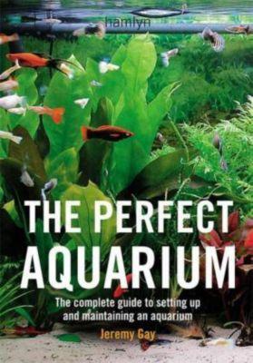 The Perfect Aquarium, Jeremy Gay