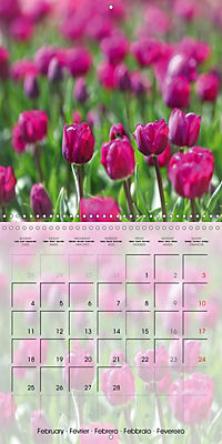 The Pink Garden (Wall Calendar 2019 300 × 300 mm Square) - Produktdetailbild 2