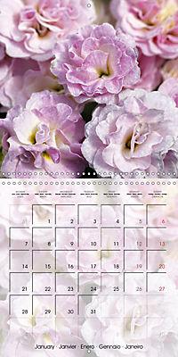 The Pink Garden (Wall Calendar 2019 300 × 300 mm Square) - Produktdetailbild 1