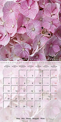 The Pink Garden (Wall Calendar 2019 300 × 300 mm Square) - Produktdetailbild 5