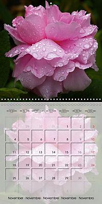 The Pink Garden (Wall Calendar 2019 300 × 300 mm Square) - Produktdetailbild 11