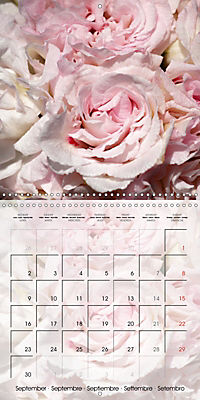 The Pink Garden (Wall Calendar 2019 300 × 300 mm Square) - Produktdetailbild 9
