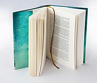 The Promise - Der goldene Hof - Produktdetailbild 2