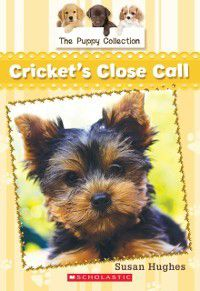 The Puppy Collection: Puppy Collection #6: Cricket's Close Call, Susan Hughes