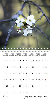 The Purity of the Colour White (Wall Calendar 2019 300 × 300 mm Square) - Produktdetailbild 5