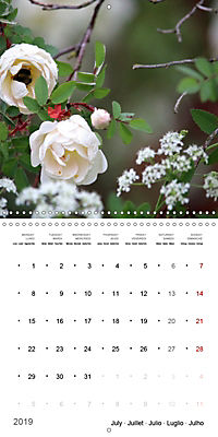 The Purity of the Colour White (Wall Calendar 2019 300 × 300 mm Square) - Produktdetailbild 7