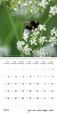 The Purity of the Colour White (Wall Calendar 2019 300 × 300 mm Square) - Produktdetailbild 6