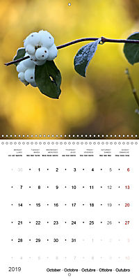 The Purity of the Colour White (Wall Calendar 2019 300 × 300 mm Square) - Produktdetailbild 10