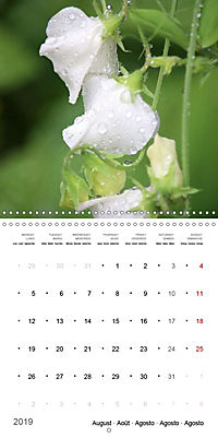 The Purity of the Colour White (Wall Calendar 2019 300 × 300 mm Square) - Produktdetailbild 8