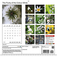 The Purity of the Colour White (Wall Calendar 2019 300 × 300 mm Square) - Produktdetailbild 13
