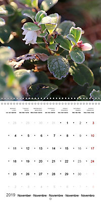 The Purity of the Colour White (Wall Calendar 2019 300 × 300 mm Square) - Produktdetailbild 11