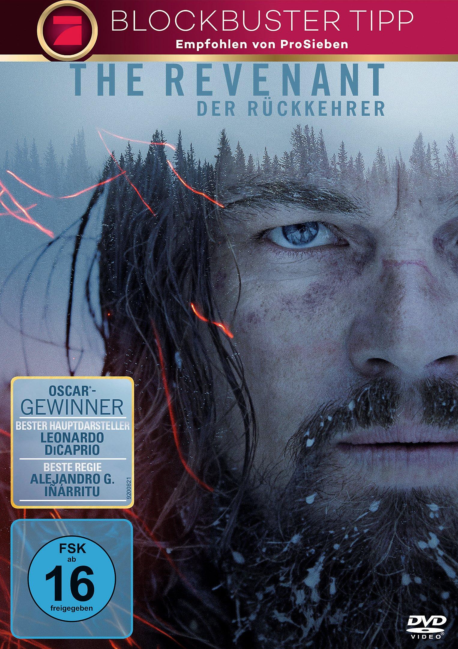 The Revenant - Der Rückkehrer Kritik