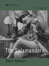 The Salamander (World Digital Library Edition), Owen Johnson