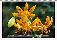 The Scent of Lilies (Wall Calendar 2019 DIN A3 Landscape) - Produktdetailbild 4