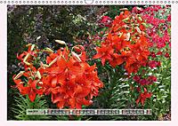 The Scent of Lilies (Wall Calendar 2019 DIN A3 Landscape) - Produktdetailbild 6