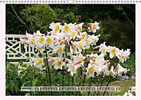The Scent of Lilies (Wall Calendar 2019 DIN A3 Landscape) - Produktdetailbild 3