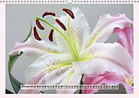 The Scent of Lilies (Wall Calendar 2019 DIN A3 Landscape) - Produktdetailbild 12