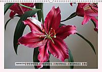 The Scent of Lilies (Wall Calendar 2019 DIN A3 Landscape) - Produktdetailbild 9