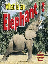 The Science of Living Things: What is an Elephant?, Bobbie Kalman, John Crossingham