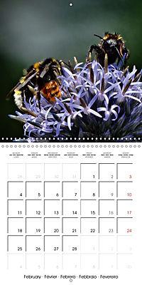 The secret World of Insects (Wall Calendar 2019 300 × 300 mm Square) - Produktdetailbild 2