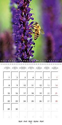 The secret World of Insects (Wall Calendar 2019 300 × 300 mm Square) - Produktdetailbild 4